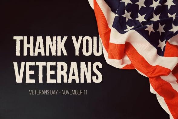 Thank you veterans flag image-1